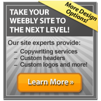 Weebly Web Design Services